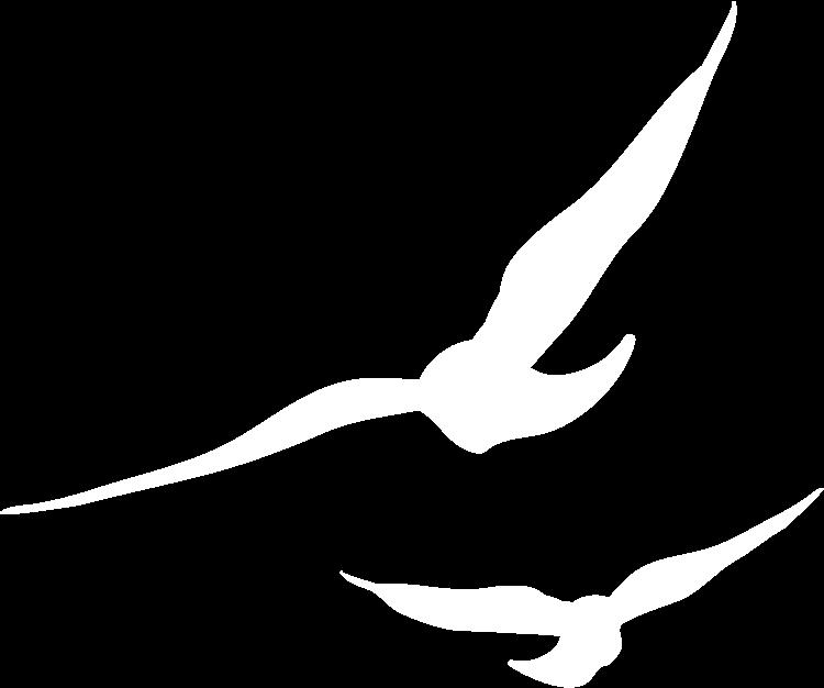 Freedom Design Co.